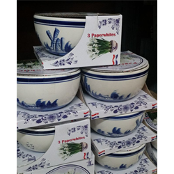 Forcing Bowl Delft Blue gift kit (1 Bowl, 3 Paperwhites - Ships Oct thrru Jan)